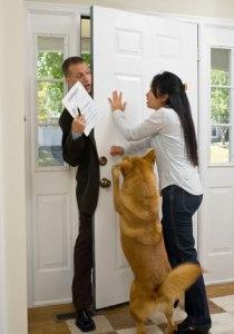 Ask-Cesar-Doorbell-Barkers