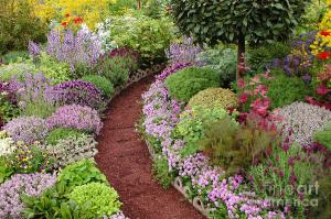 english-garden-path-mike-nellums