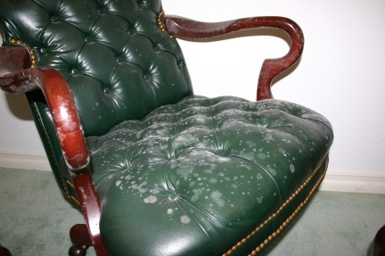 86. How to Remove Mold from Leather Furniture